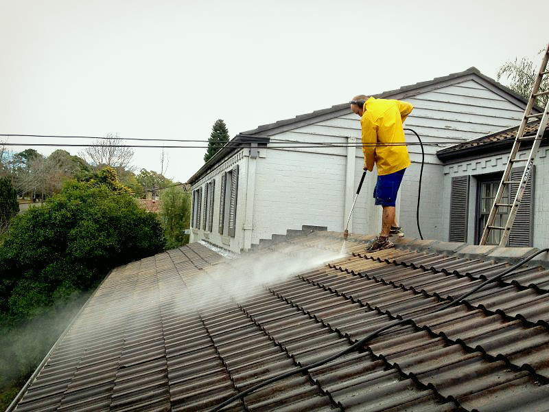 Reasons to use professional roof cleaning services - Reasons get roof cleaned ...